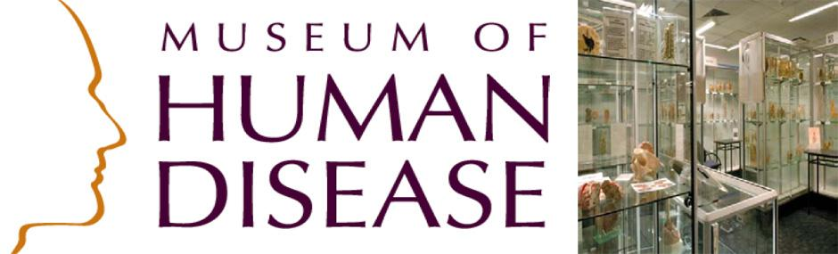 museum_banner_4